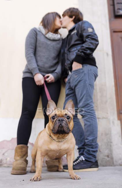 Bouledogue français avec les propriétaires de baisers sur fond — Photo de stock