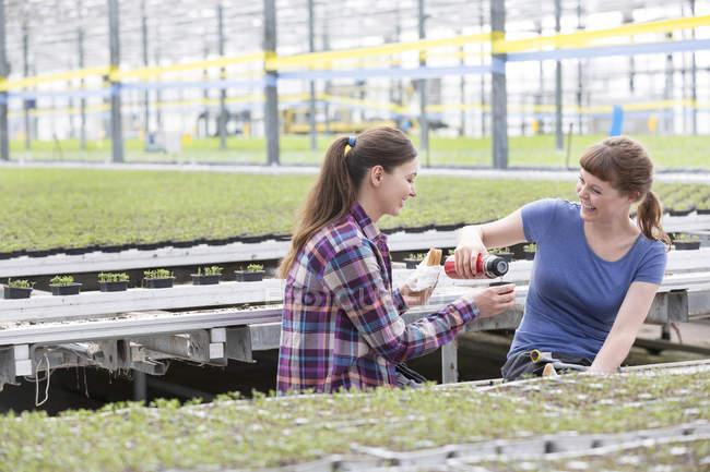 Two women in greenhouse having a coffee break — Stock Photo
