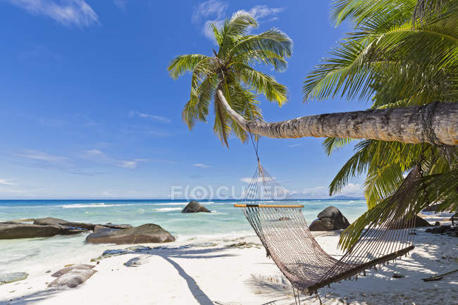 Seychelles, Silhouette Island, spiaggia di La Passe, Presidentel Beach, palm con amaca — Foto stock
