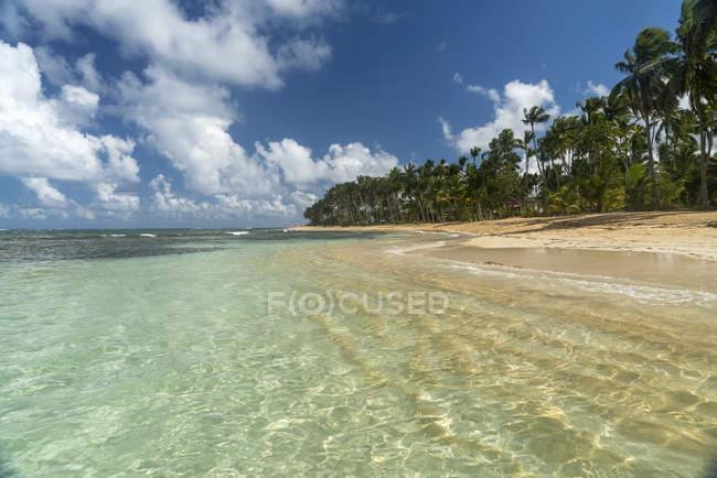 Доминиканская Республика, полуостров Самана, пляж Лас Терренас — стоковое фото