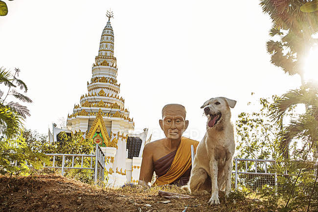 Thailand, Phuket, view to Nai Harn temple with Buddha statue and dog in the foreground — Stock Photo