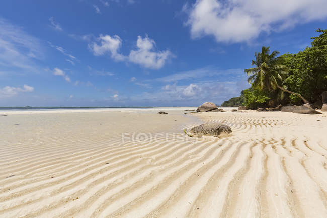 Seychelles, Indian Ocean, Mahe Island, beach Anse Royale, low tide — Stock Photo