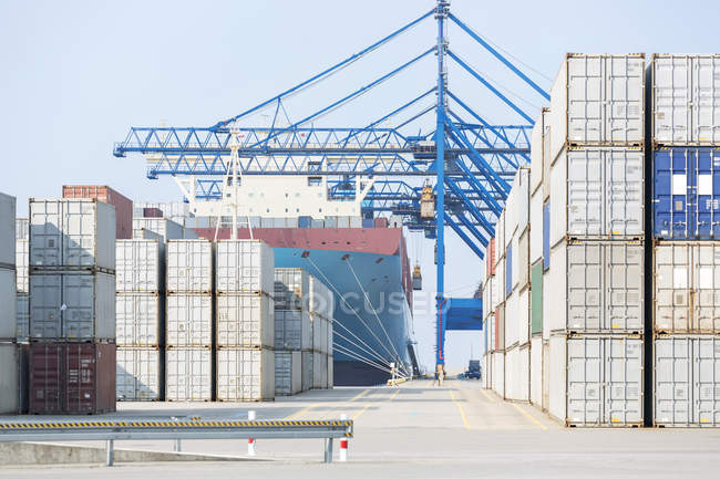 Containers and industrial container cranes — Stock Photo