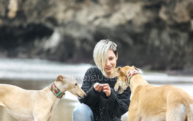 Young woman feeding her greyhounds on the beach — Stock Photo