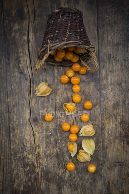 Physalis in cestino di vimini e in legno scuro — Foto stock