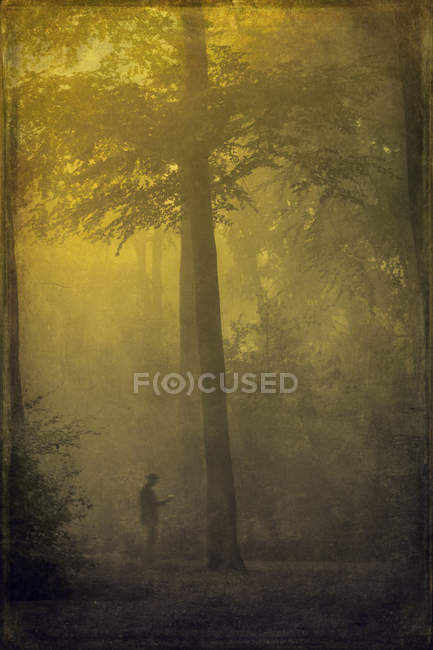 Man standing in dark foggy forest — Stock Photo