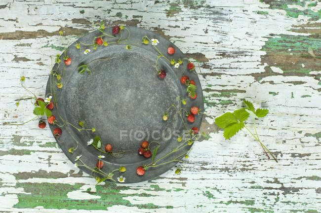 Placa de estaño decorada con fresas de bosque - foto de stock