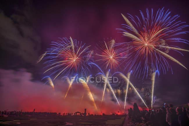 Germany, Hannover, international fireworks competition at Herrenhausen Gardens — Stock Photo