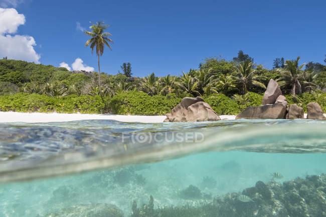 Сейшельские острова, Ла Диг, Индийский океан, кокосовые Анс, пляж Сплит выстрел — стоковое фото