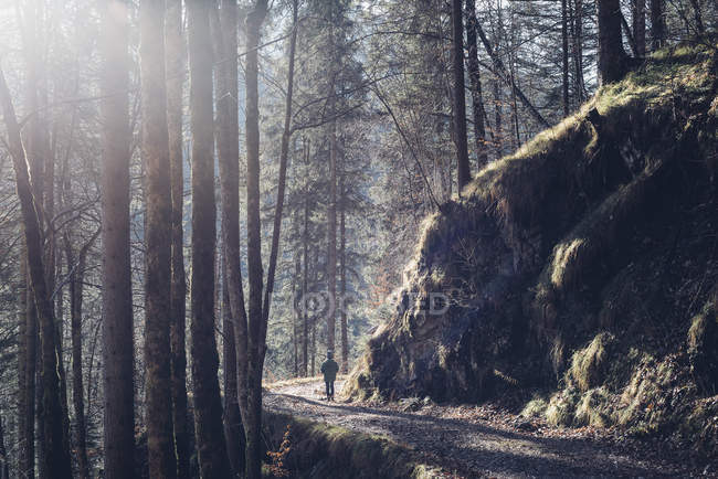 Germany, Berchtesgadener Land, boy on a path in the woods in winter — Stock Photo