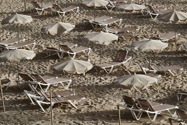 Испания, Канарские острова, Фуэртевентура, Морро Хабле, пляж с зонтами и шезлонгами — стоковое фото