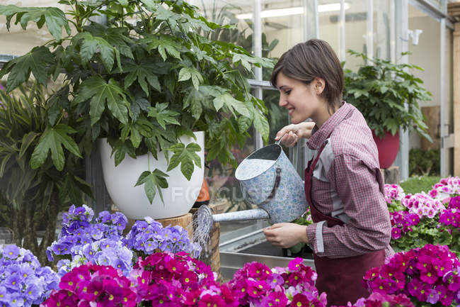 Female gardener watering flowers — Stock Photo
