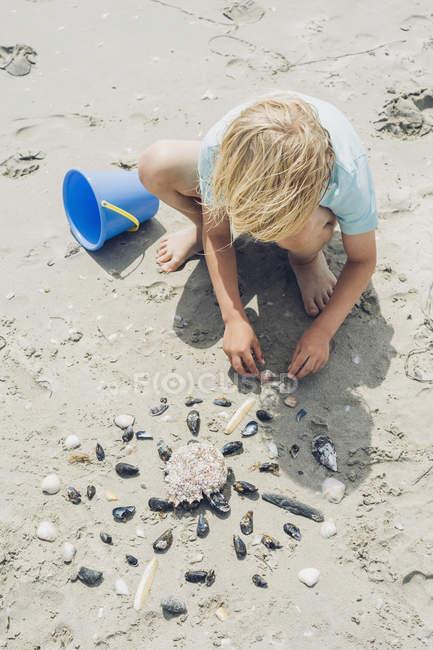 Ragazzo biondo gioca con le conchiglie sulla spiaggia — Foto stock