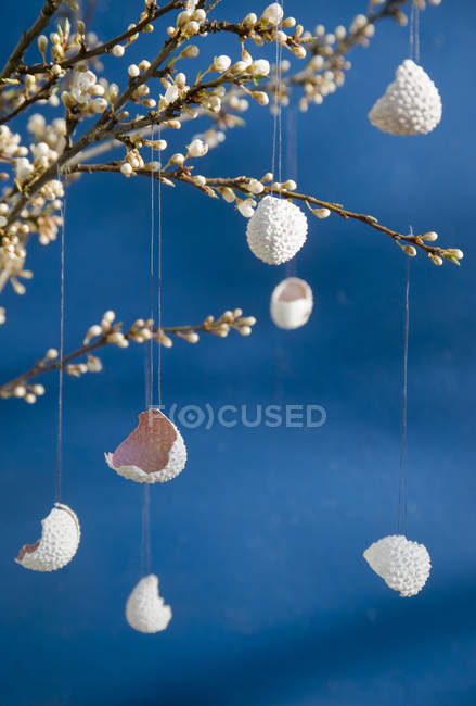 Selbstgemachte Osterdekoration aus weiß bemalten Litschi-Schalen — Stockfoto
