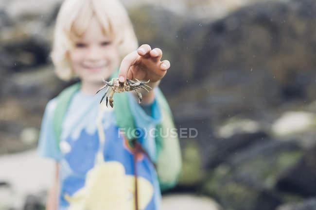Primo piano del granchio della holding della ragazzo sulla spiaggia — Foto stock