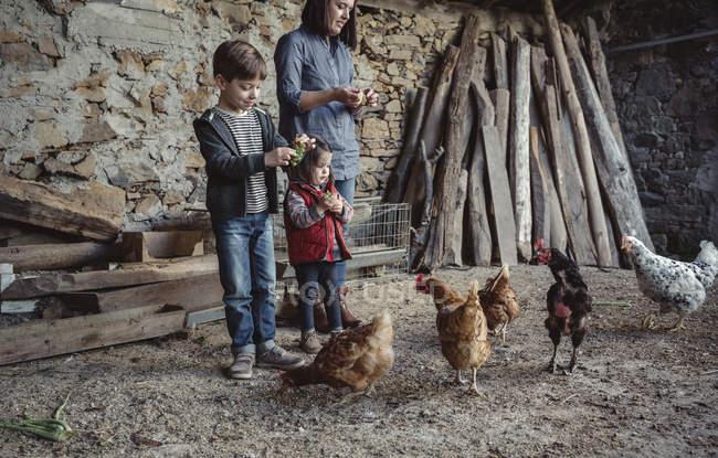 Місцева мешканка і діти годівлі курей з зеленого винограду в обори ферми — стокове фото