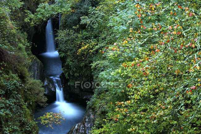 Espanha, Cantábria, Saja passando pelo Parque Natural Saja-Besaya — Fotografia de Stock