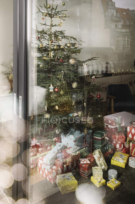 Decorated Christmas Tree With Presents As Seen From Outside Color