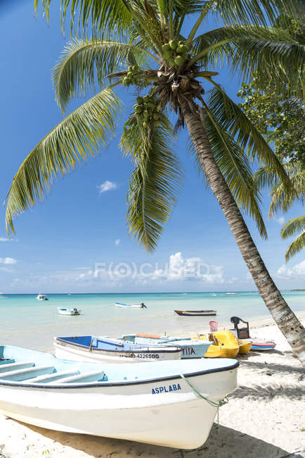 Dominican Republic, boats on the sandy beach of Bayahibe during daytime — Stock Photo