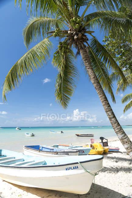 Доминиканская Республика, лодки на песчаном пляже Баяибе в дневное время — стоковое фото