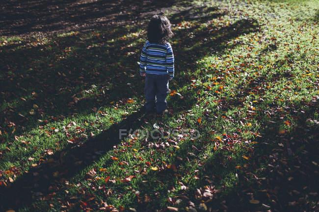 Ragazzo in piedi da solo sul prato con foglie autunnali — Foto stock
