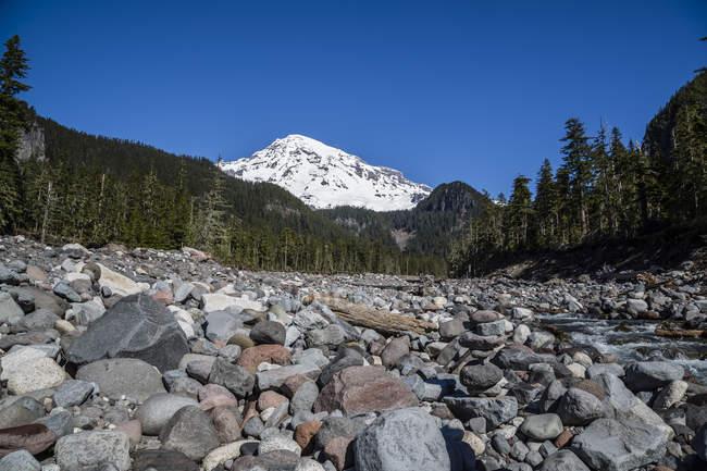 USA, Washington, Seattle, Mount Rainier National Park and stones on foreground — Stock Photo