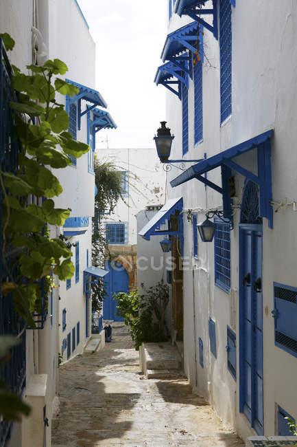 Tunisia, Sidi Bou Said, traditional residential houses — Stock Photo