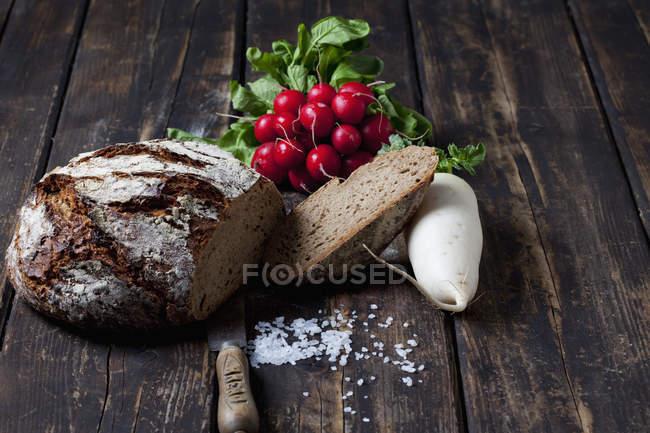 Pão duro com rabanetes vermelhos e brancos — Fotografia de Stock