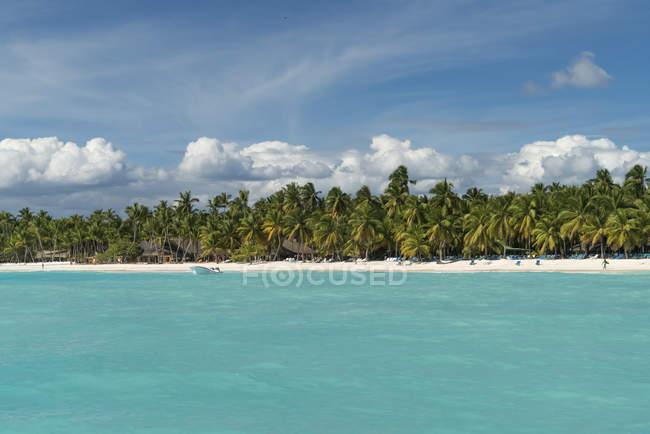 Карибского бассейна, Доминиканская Республика, пляж на Карибский остров Исла Saona — стоковое фото