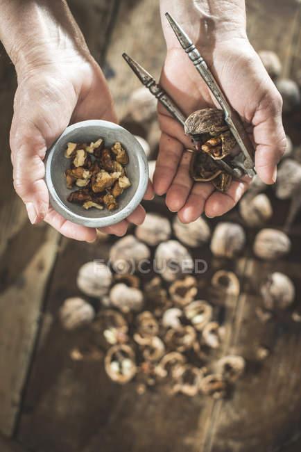 Female hands holding cracked walnuts — Stock Photo