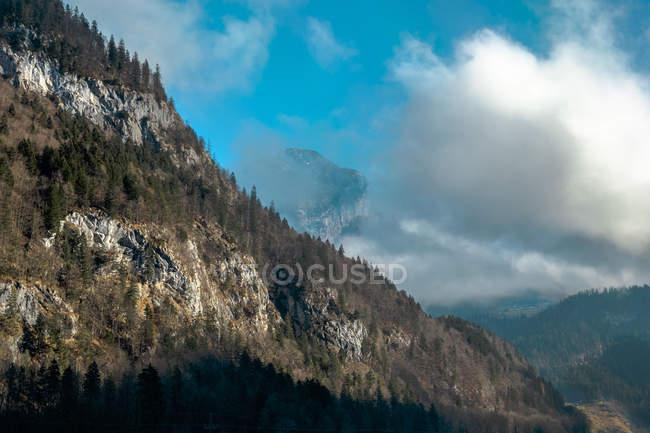 Austria, estado de Salzburgo, Maria Alm en Hochkoenig, paisaje alpino - foto de stock
