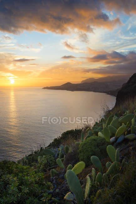 Portugal, Madeira, vista do Funchal ao pôr do sol — Fotografia de Stock