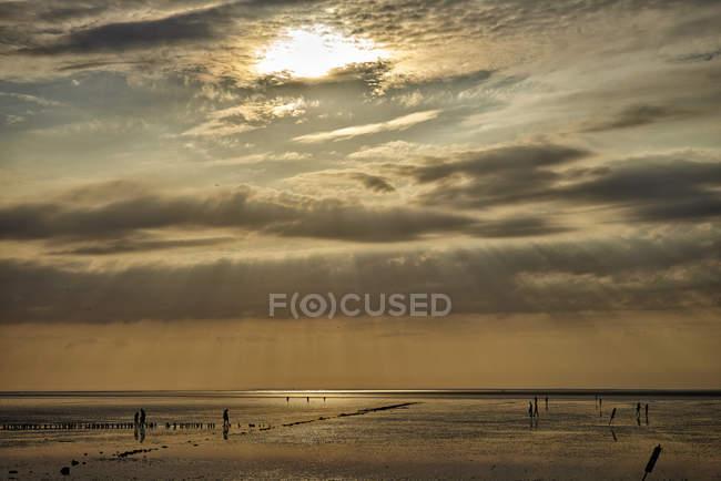 Германия, Дитмарк, Оског-Мбаппе, Закат на приливах Северного моря — стоковое фото