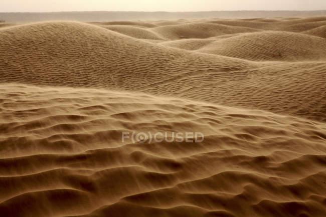 Tunesien, Sanddünen in der Wüste Sahara, großen östlichen Erg — Stockfoto