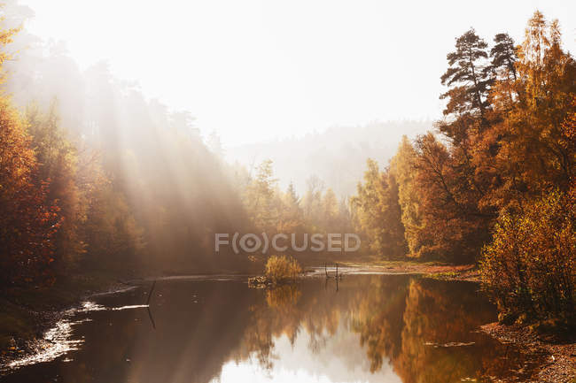 Germany, Rhineland Palatinate,  Ungeheuersee in autumnal  Palatinate Forest at haze — Stock Photo