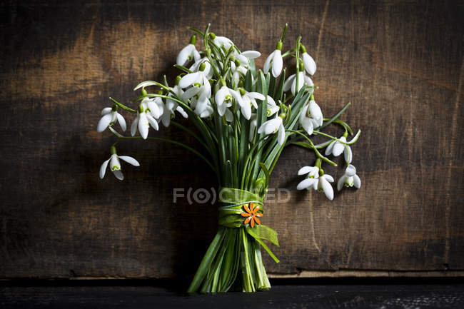 Bunch of snowdrops in front of dark wood — Stock Photo