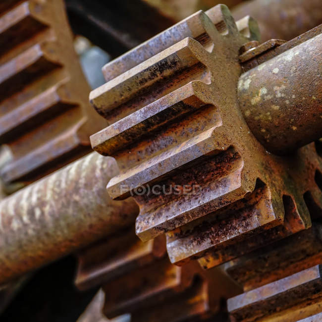 Rusty metal old gear, close-up — Stock Photo