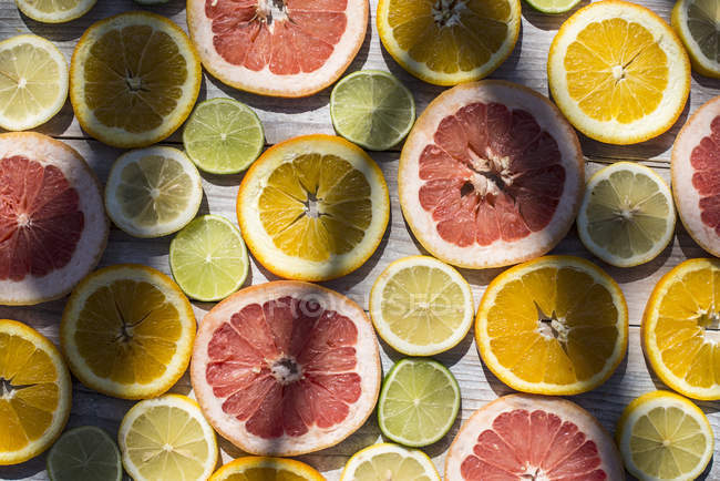 Slices of different citrus fruits — Stock Photo