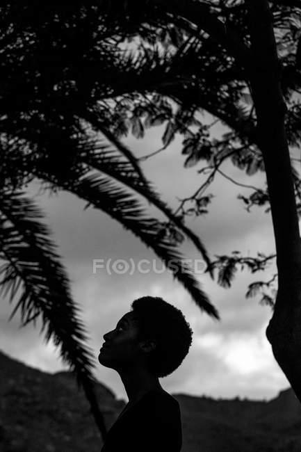 Silhouette de la tête de femme dans la nature — Photo de stock
