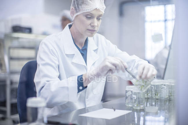 Woman wearing protective clothing working in lab — Stock Photo