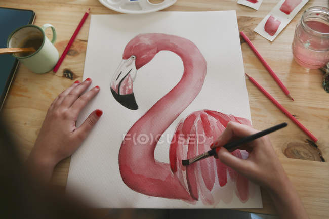 Woman's hand painting aquarelle of a flamingo on desk in her studio — Stock Photo