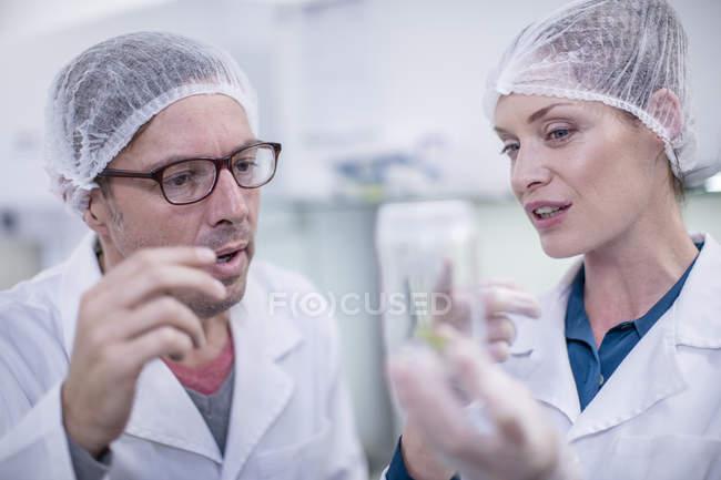 Wissenschaftler, die im Labor arbeiten, tragen Schutzkleidung — Stockfoto