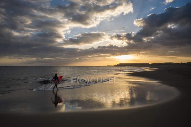 Vista distante do menino adolescente carregando prancha de surf na praia ao pôr do sol bonito — Fotografia de Stock