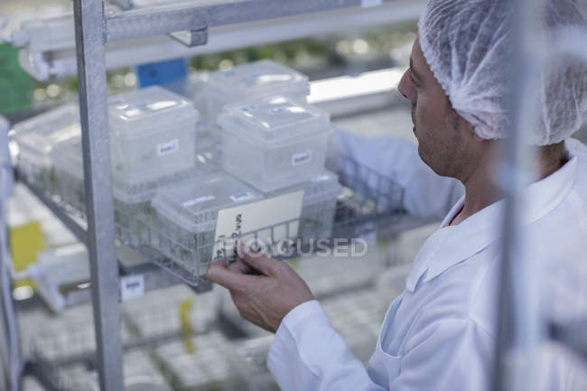 Scientist working in lab wearing protective clothing — Stock Photo