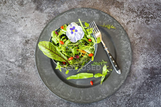 Schüssel mit Wildkräutersalat mit essbaren Blüten, Preiselbeeren und Wolfbeeren auf dem Teller — Stockfoto