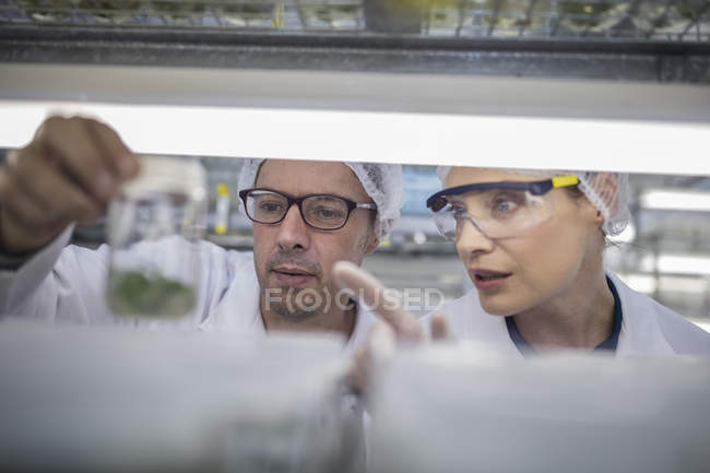 Scientists working in lab wearing protective clothing looking at sample — Stock Photo