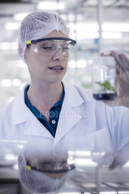 Woman in lab wearing protective clothing looking at plant sample — Stock Photo