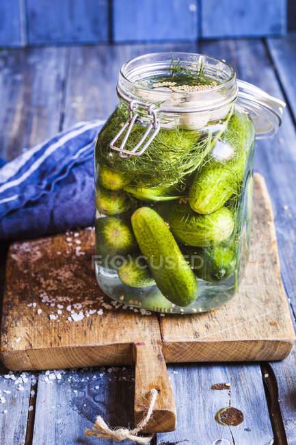 Closeup vista de pepinos em preservar o frasco de fermentação — Fotografia de Stock