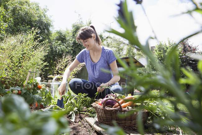 Улыбающаяся кавказская женщина садоводство в овощной грядке — стоковое фото