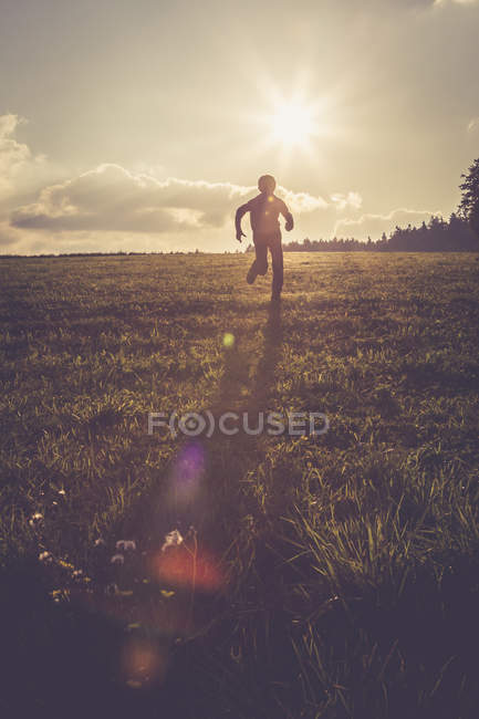 Silhouette of boy running on a meadow at backlight — Stock Photo